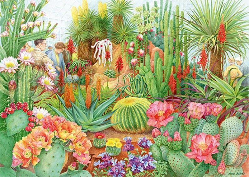 The Flower Show: Desert Plants - Falcon de Luxe  1000 Piece Jigsaw Puzzle - All Jigsaw Puzzles