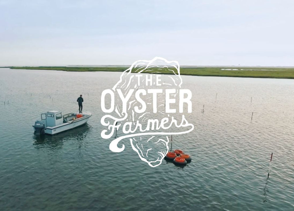 The Oyster Farmers - Restocked / '18 Plans