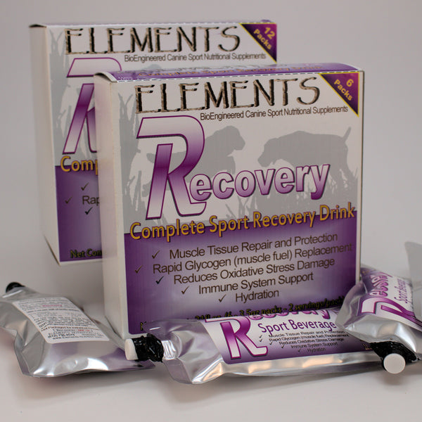 Elements R Recovery Beverage 3 5 oz Sport Pack Pouches