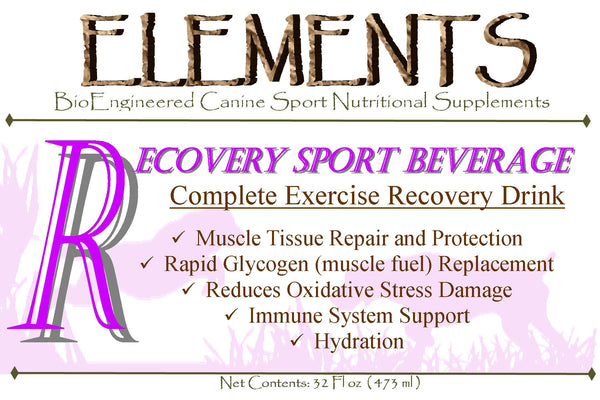 Elements R Exercise Recovery Beverage
