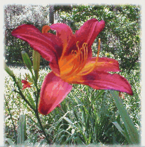 day lily cross stitch pattern