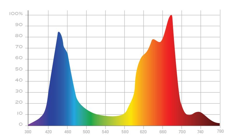 Understanding the Light Spectrum of LED Grow Lights