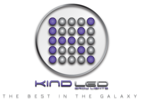 LED Throwdown: Who Makes the Best LED Grow Lights?