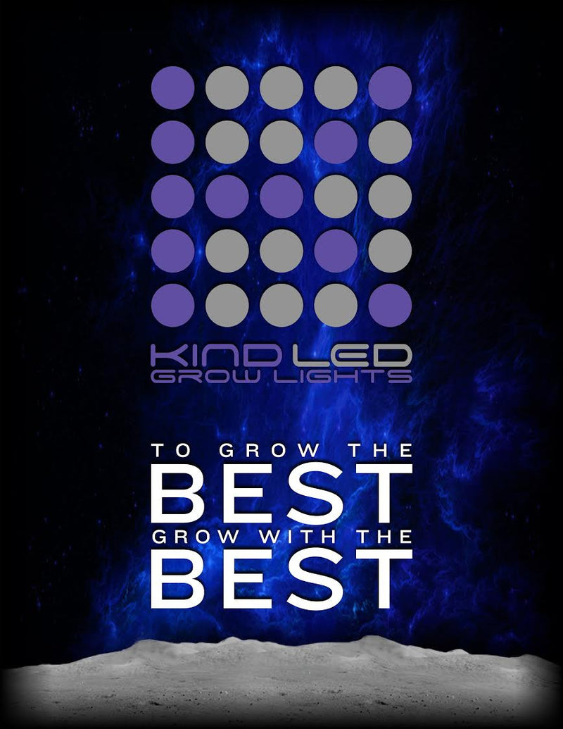 Kind LED Grow Light – Best Yield