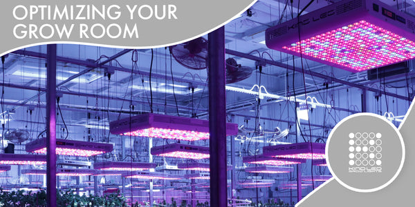 Optimizing Your Grow Room with Kind LED Grow Lights