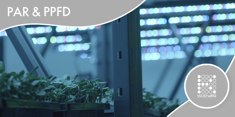 Kind LED Grow Lights PPFD readings