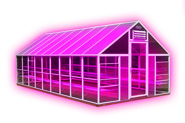 Pinkhouses: LED Grow Lights Enter the Greenhouse