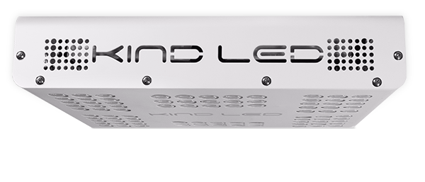 KIND LED XL300