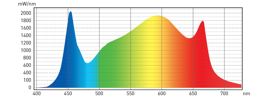White Light LED Spectrum