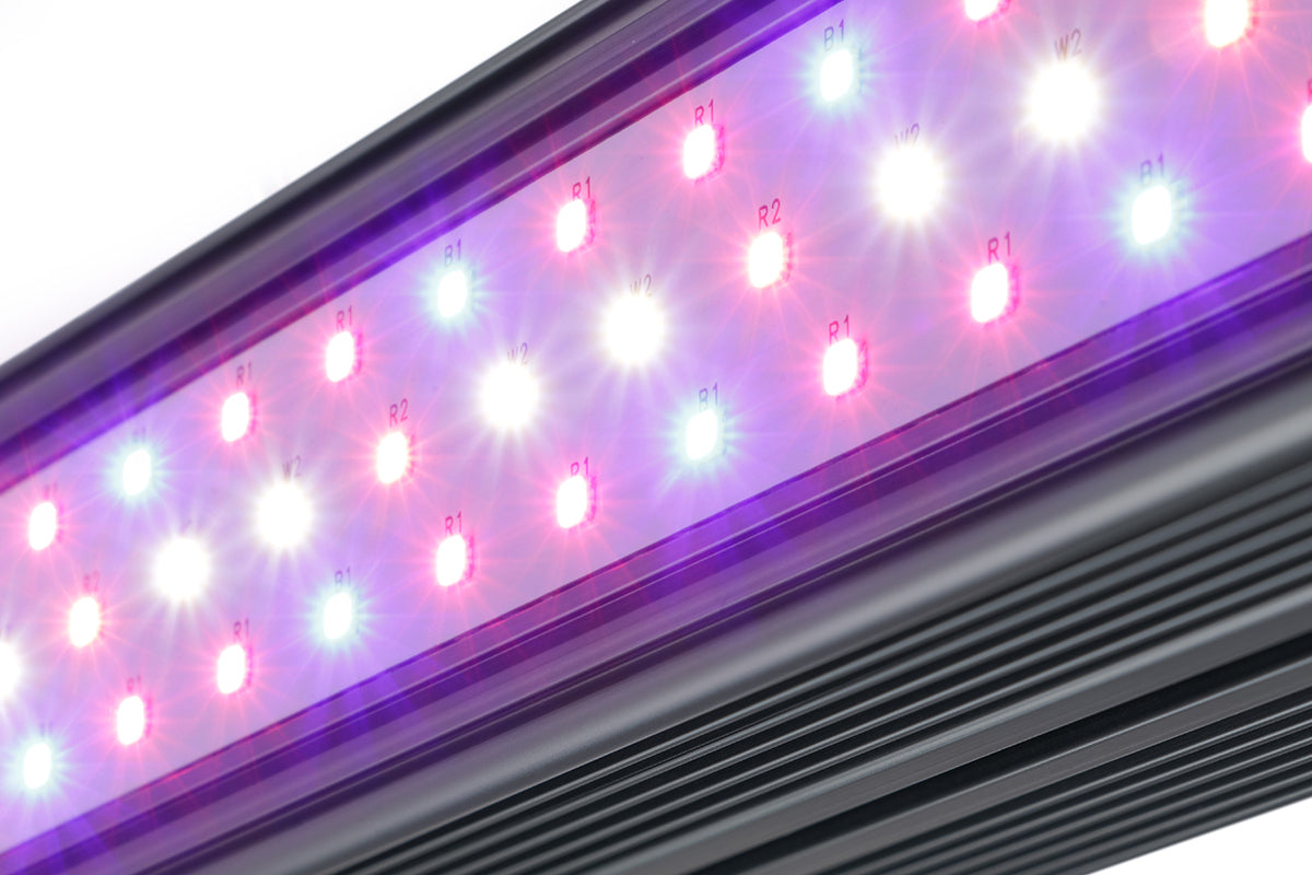 KIND LED X Series XD75/XD150 Bar Light - Kind Led Grow Lights
