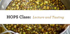 Hops Class - Lecture & Tasting