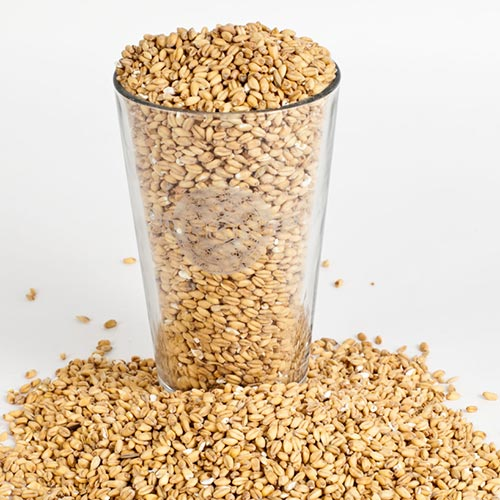 Oak Smoked Wheat Malt-Adjunct