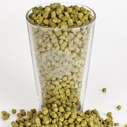 Czech Saaz Hop Pellets - 1 oz-Hops