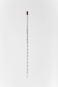 Laboratory Thermometer 12""
