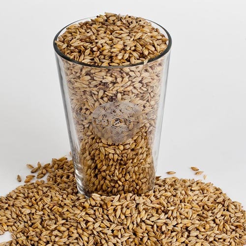 Medium Crystal-Malted Barley