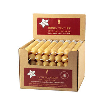 Honey Candles - 6 Inch Tube Case of 48 by Honey Candles - Ebambu.ca natural health product store - free shipping <59$