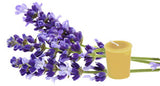 Honey Candles - Essential Votives - Candles scented with essential oils