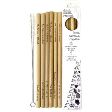 The Future is Bamboo - Bamboo Straw - 6 straws - Ebambu.ca free delivery >59$
