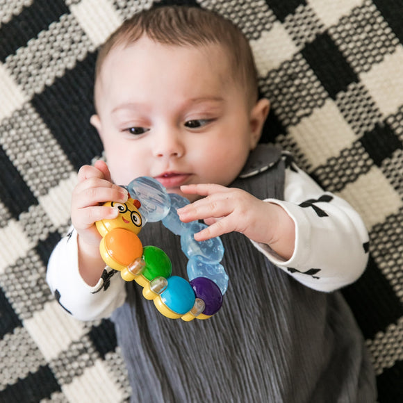 Toysmith Toys Baby Einstein Teether