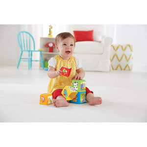 Fisher Price Toys Fisher-Price Stack & Explore Blocks