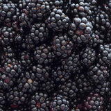 BOIRON Frozen Fruit Puree, Blackberry