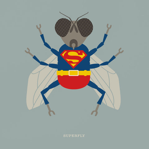 "Rock 'N Roll Zoo: Superfly - 12"" Print"