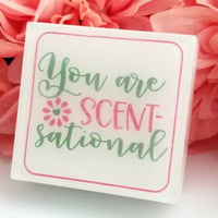 You are Scentsational Soap
