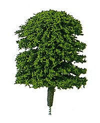 "Plastruct 94001 1/4"" x 1/4"" Plastrees Round Head Trees (Pack of 5)"