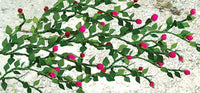 JTT Scenery Products 95540 O 2-1/2'' Rose Bushes (Pack of 6)