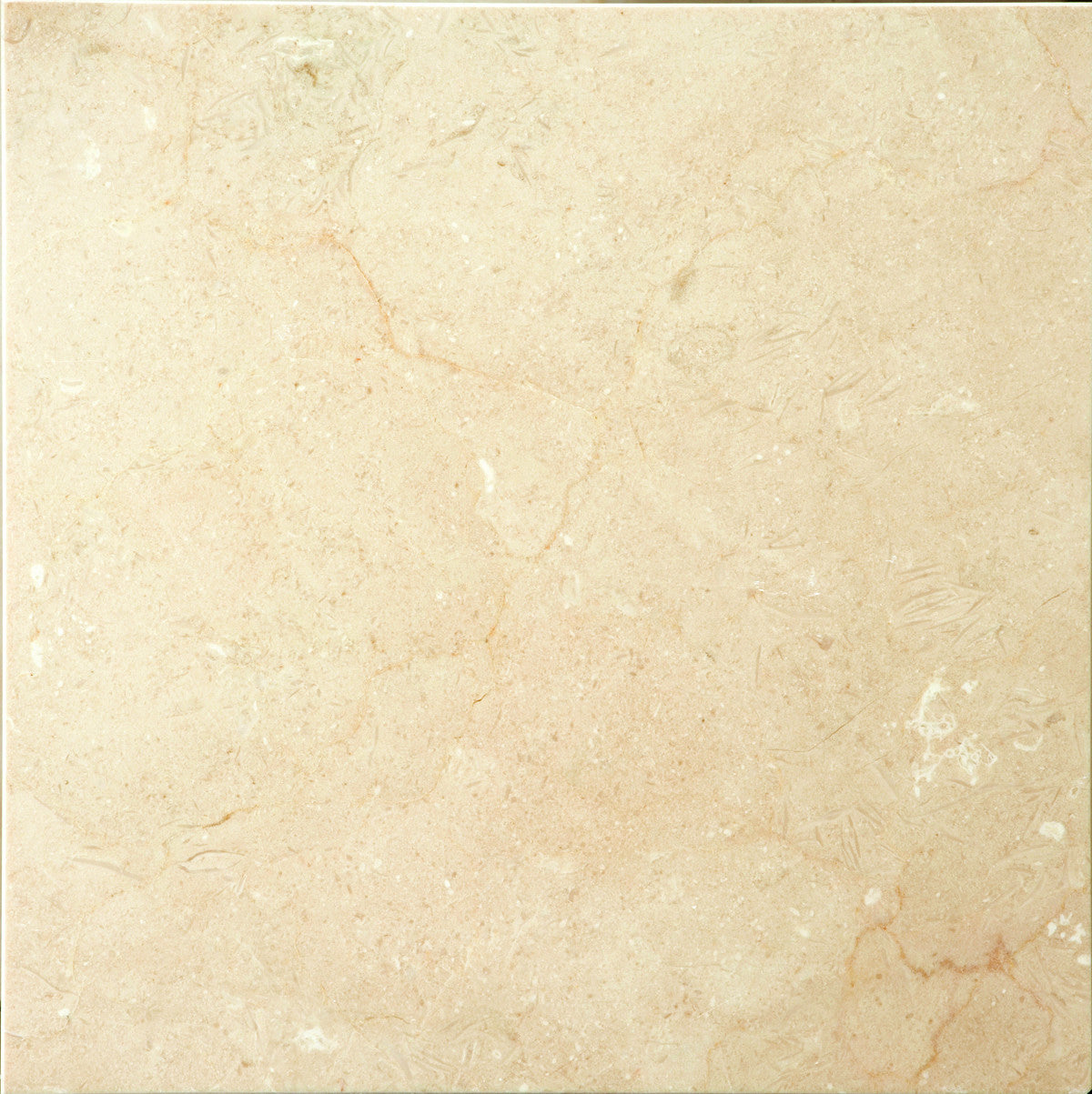 Marble emser tile marble marble marble marble dailygadgetfo Images