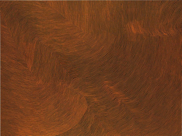 Sotheby's sets Aboriginal art auction record