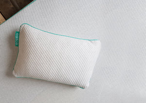 The Easca Gel Foam Pillow