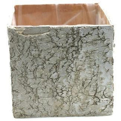 "Birch Box Square Planter - 6"" x 6"" - Relish New Orleans"