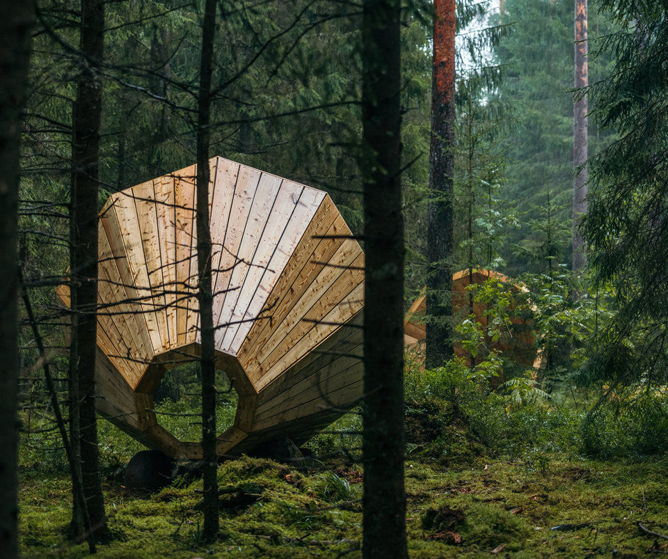 Estonian Forest Becomes Site of Beautiful Student Artwork