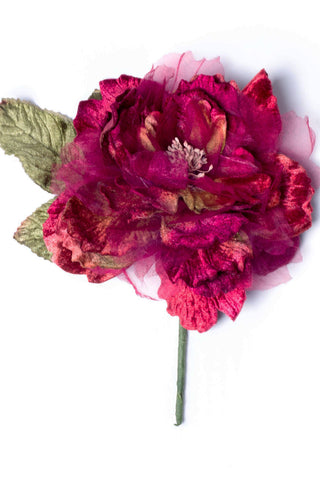 Cabbage Rose Burgundy