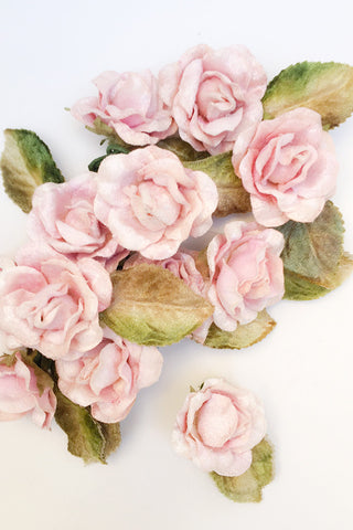 Baby Roses Pink