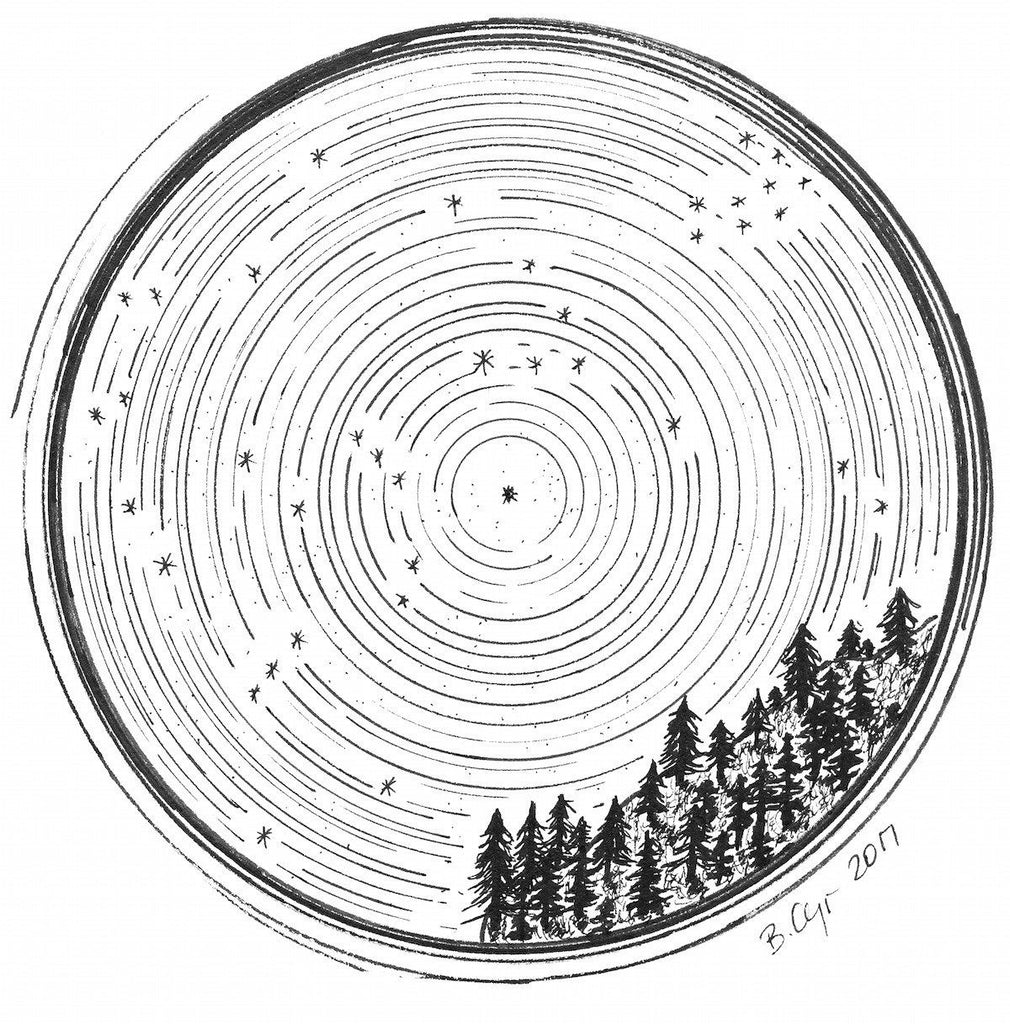 Star trails - Pleaides, Taurus and Orion over a tree covered mountainside - Original Drawing