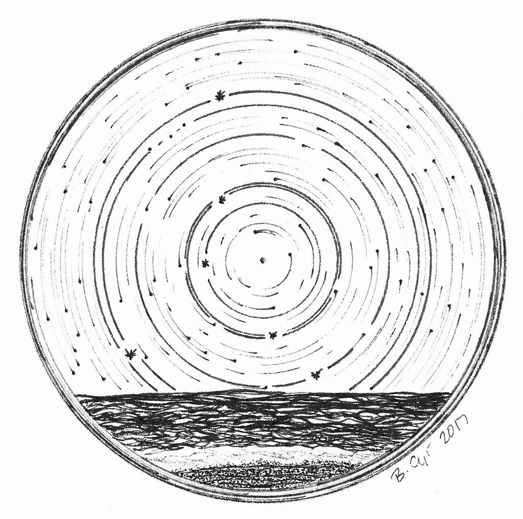 Star trails - Zodiac Constellations - Pen and Ink Drawing Giclee Prints - Beth Cyr Handmade Jewelry