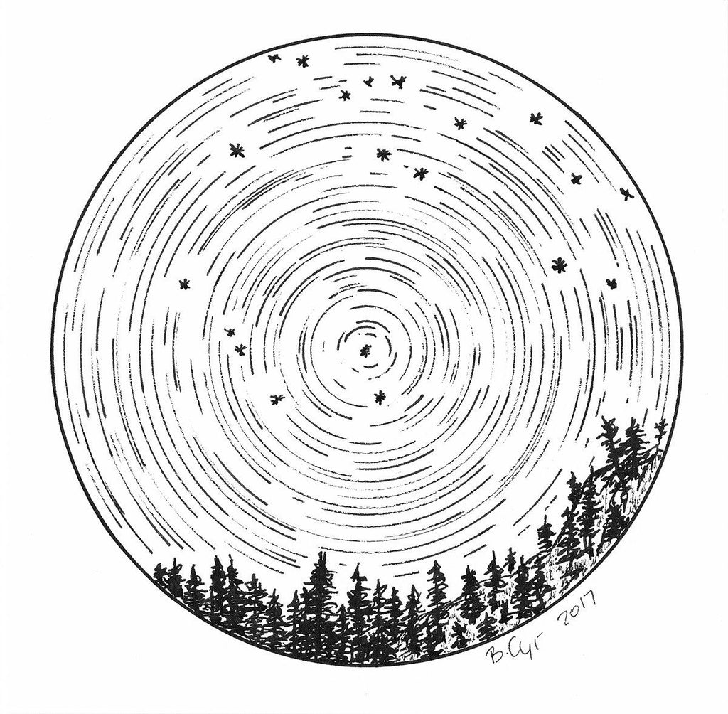 Leo - Star Trails - Zodiac Constellations - Pen and Ink Drawing Print - Beth Cyr Handmade Jewelry