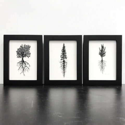 Trees and Roots - Fir, Oak, or Gingko - Pen and Ink Drawing Print - Beth Cyr Handmade Jewelry