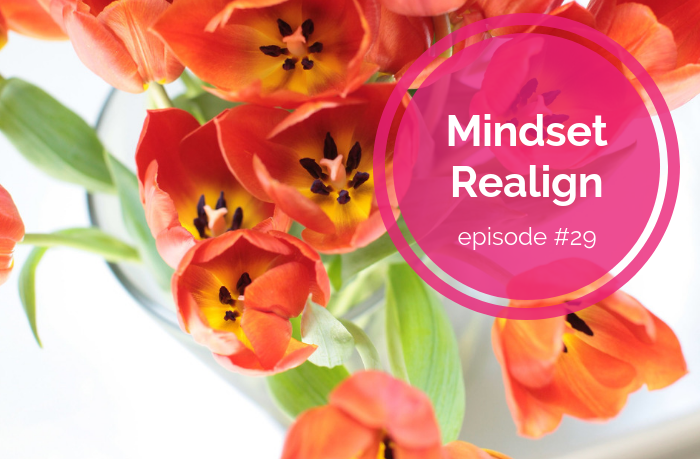 {E29} Simple Shift in Perspective - Mindset Realign