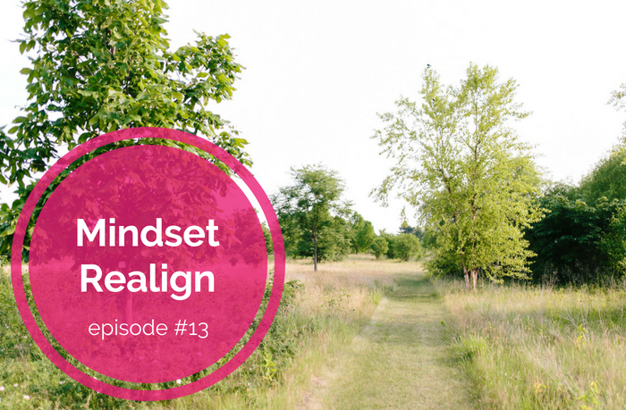{E13} Reset and Recalibrate Mental (and Emotional) Debris - Mindset Realign