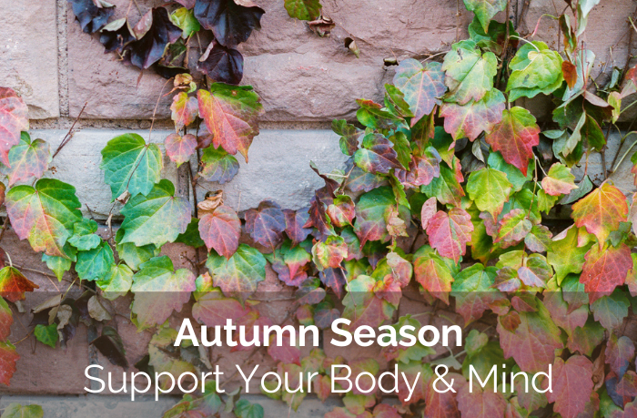 Support Your Body & Mind During Autumn Season