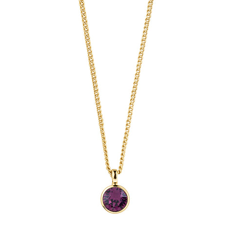 Dyrberg/Kern Ette SG Purple Necklace