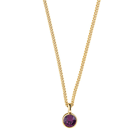 Dyrberg/Kern Jemma SG Purple Necklace