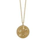 Meadowlark Talisman Necklace - Gold Plate & Reclaimed White Diamond