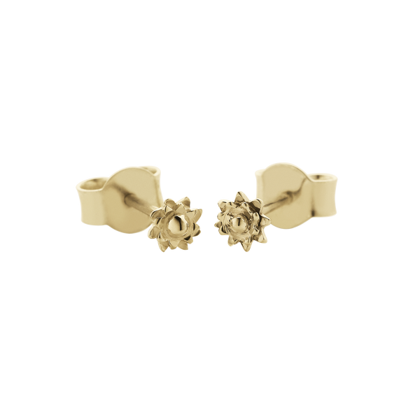 Meadowlark Micro Protea Studs - 9ct Yellow Gold