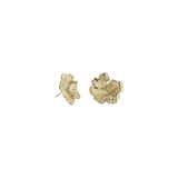 Meadowlark Coral Earrings Small - Gold Plated