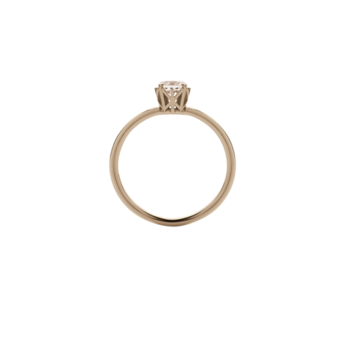 Meadowlark Signature Solitaire Ring - 9ct Rose Gold & Morganite