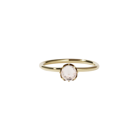 Meadowlark Signature Solitaire Ring - 9ct Yellow Gold & Morganite